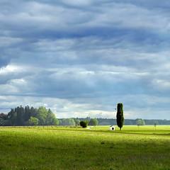 Square (Claude@Munich) Tags: germany bavaria upperbavaria oberhaching oberbiberg chapel fieldchapel tree field fields pasture light shadow green blue square claudemunich bayern oberbayern feldkapelle kapelle baum wiese wiesen licht schatten grün blau quadratisch