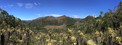 Colombia. (richard.mcmanus.) Tags: colombia southamerica landscape mcmanus paramo richardmcmanus gettyimages