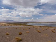 Salar de Tara (jess_star87) Tags: atacamadesert chile sanpedrodeatacama landscape wilderness salardetara saltflat lake clouds sky