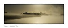 Brume de Loire (Bruno-photos2013) Tags: loire landscape leverdujour anjou maineetloire france fleuve foggy paysage paysageligérien paysdeloire landscapes river