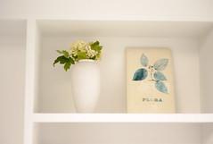 L1015092c (haru__q) Tags: leica m8 leicam8 leitz summicron flower book 花 本
