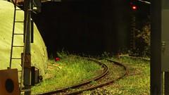 track to where? (Leonard J Matthews) Tags: railway track line red light bowenhills queensland australia nowhere mythoto exhibitionloop ladder signal