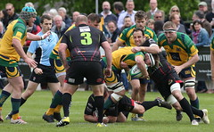 BW0Y3048 (Steve Karpa Photography) Tags: henleyhawks henley rugby rugbyunion game sport competition outdoorsport redruth