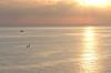 DSCN5802 (Giovanni Valentino) Tags: sicilia sicily aspra bagheria capo zafferano alba aurora pescherecci gabbiani nikon coolpix p510 sun sunrise