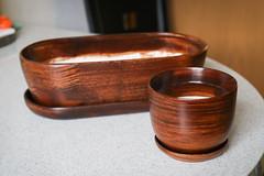 Keramikschale (blumenbiene) Tags: topf schale keramikschale keramiktopf keramik ceramic pot bowl indoor plants pflanzen zimmerpflanzen plant