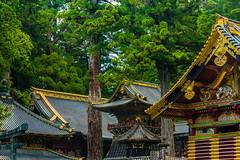 Nikkō National Park, Kanto region, Japan (David Ducoin) Tags: asia boudhism japan kanto national nature nikko park religion shinto shrine temple wonder jp