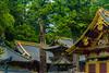 Nikkō National Park, Kanto region, Japan (David Ducoin) Tags: asia boudhism japan kanto national nature nikko park religion shinto shrine temple wonder jp