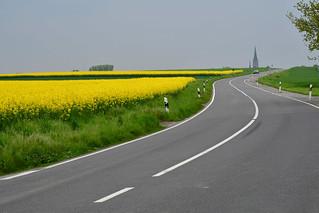 Die Farben des Frühlings - the colors of spring