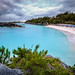 Bermuda 2017