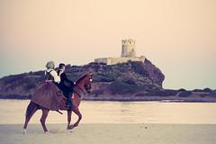 romantic love (Antonio Crisponi) Tags: santefisio2017 nora pula cagliari sardinia spiaggia mare passeggiata romantica sogno amore sella cavallo cielo infinito