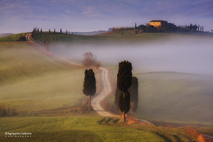 The way to the farmhouse (Agrippino Salerno) Tags: valdorcia italy tuscany pienza farmhouse cypress countryroad fog sunrise morning agrippinosalerno canon manfrotto beautiful terrapille hills trees travel green