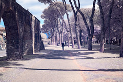 Aqueduct (DanAie) Tags: italy italia pisa irphotography ir photography infrared infrarosso street streetphotography color colour composition human history composizione false falsecolor nikon nikon35 path girl