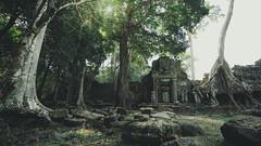 The lost world (rodrigocarabajal) Tags: fullframe a7ii a7m2 sonya7ii vollformat cambodia siem reap angkor landscape variotessartfe41635
