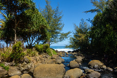 Kaui 228 DSC03735 (cpburt) Tags: kauai hawaii napalicoast kalalautrail hanakapiai beach