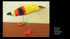 prescott-plaster-bird-carlty