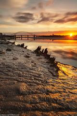 Wigg Islamd (4 of 10) (andyyoung37) Tags: merseyflatbargewrecks runcorn runcornbridge uk wiggisland cheshire rivermersey sunset england unitedkingdom gb