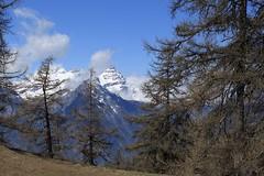 Cime de l'Est (bulbocode909) Tags: valais suisse coldutronc montchemin cimedel'est montagnes nature arbres mélèzes printemps paysages ciel nuages bleu vert