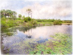 Morning at Hawks Bluff (Solly Avenue) Tags: landscape dawn waterscape painterlyapp ipadpainting ipadsketching impressionism digitalphotoart travel hiking photomanipulation painterly