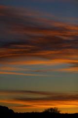 Sunset 4 11 2017 #07 (Az Skies Photography) Tags: sun set sunset dusk twilight nightfall cloud clouds sky skyline skyscape red orange yellow gold golden salmon black rio rico arizona az riorico rioricoaz arizonasky arizonaskyline arizonaskyscape arizonasunset april 11 2017 april112017 41117 4112017 canon eos rebel t2i canoneosrebelt2i eosrebelt2i