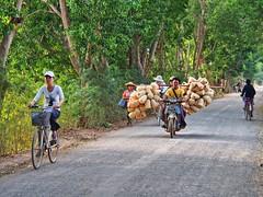 Inle lake - Transport (sharko333) Tags: travel reise voyage asia asien asie shanstate myanmar burma birma lakeinle inlelake nyaungshawe people street transport vehicle bicycle olympus em5