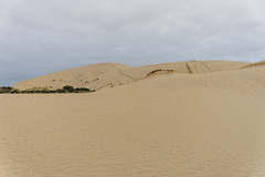 Wydmy Giant Te Paki | Giant Te Paki Sand Dunes