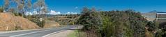 Australian Capital Territory II (bbxtt) Tags: landscape australia canberra act road bush autumn