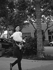 Dog Walk (Tim Roper) Tags: 164 35mm leica hc110 trix summiluxm street woman dog blackandwhite black white analog film kodak m6
