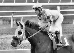 "2017-04-23 (70) r9 Forest Boyce on #1 Tricky Escape - monochrome (JLeeFleenor) Tags: photos photography md marylandracing maryland marylandhorseracing laurelpark monochrome bw blackwhite jockey جُوكِي ""赛马骑师"" jinete ""競馬騎手"" dżokej jocheu คนขี่ม้าแข่ง jóquei žokej kilparatsastaja rennreiter fantino ""경마 기수"" жокей jokey người horses thoroughbreds equine equestrian cheval cavalo cavallo cavall caballo pferd paard perd hevonen hest hestur cal kon konj beygir capall ceffyl cuddy yarraman faras alogo soos kuda uma pfeerd koin حصان кон 马 häst άλογο סוס घोड़ा 馬 koń лошадь outdoors outside forestgboyce femalejockey femaleathlete"