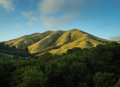 Black Mountain, aka ... (Dan Brekke) Tags: marincounty blackmountain westmarin pointreyesstation california landscapes