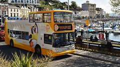 """Stagecoach South-West. WA05 MHE. 18305. """"Porter"""". (Drive-By Photography - (2M Views!!)) Tags: stagecoach southwest wa05mhe 18105 adl dennis trident alx400 opentop hop122 stmarychurch paigntonzoo torquay torbay harbour harbourside devon psv bus"""