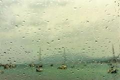 piove sulla baia ... (miriam ulivi) Tags: miriamulivi nikond7200 1maggio2017 sestrilevante baiadellefavole pioggia porto barche gocce mare 1may2017 harbor boats sea rain drops 7dwf
