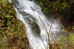 (jeiline) Tags: waterfall fall cascade olympicnationalpark longexposure longexposition