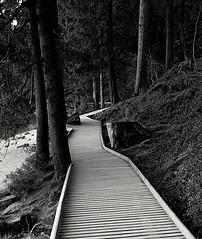 Black Forest - Mummelsee (Stefan - Pictures) Tags: blackforest bw nikon d5300 mummelsee