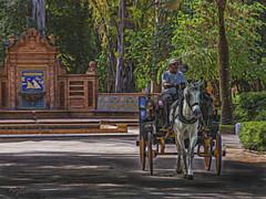 """""""Fantasia en Coche de Caballo"""". """"Fantasy Horse Carriage"""" (Capuchinox) Tags: fantasia fantasy caballo horse carruaje carriage sevilla seville spain españa park parque topaz olympus dodgeburn"""