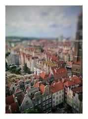 Toy Gdansk (jodagribok) Tags: poland travel toy citi gdańsk mobile oppofind5 oppo snapseed outdoor landscape summer польша гданьск
