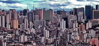 São Paulo Urban Jungle