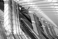 out of square (Fotoristin - blick.kontakt) Tags: liége station calatrava escalators blackandwhite diagonal lines curves architecture light shadows outofsquare fotoristin