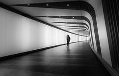 Printed In Black and White (TS446Photo) Tags: nikon london fineart black white blackandwhite travel zeiss tunnel station train tube street mono monochrome walk stranger girl reading