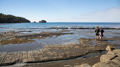 The Edge of the Rockpool (Keith Midson) Tags: tessellated pavement tasmania people water shore shoreline sea rocks rocky couple