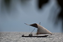 Ominous- Not Really (The Spirit of the World) Tags: dhow boat sail zanzibar ocean sea indianocean waterscape seascape tanzania eastafrica nature stonetown seafront
