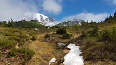 Mount Rainier NP (Ron Winkler nature) Tags: mountrainiernationalpark rainier nationalpark national park usa us unitedstates nature view panorama mountains mountain
