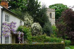 Ruins Cottage and the old ruined church at Ayot St Lawrence (Jayembee69) Tags: ruins cottage church ayotstlawrence village wisteria ruinscottage spring springtime hertfordshire herts england english uk unitedkingdom britain british