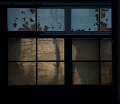 the beauty of age (dotintime) Tags: beauty age spot wrinkle weather deteriorate fade window glass pane evening gold line hole shadow dotintime meganlane
