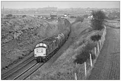 37 149 near Lichfield (geoff7918) Tags: 37149 immingham albion oil lichfield fossewaycrossing walsall 09031984