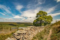 Haslingden Grane (ianbonnell) Tags: haslingdengrane lancashire england uk landscape