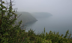 Foggy Coastline (Andy.Gocher) Tags: andygocher canon100d canon1018mm europe uk wales pembrokeshire coast coastline coastalpath fog foggy mistandfog mist