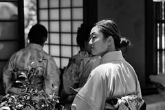 In Waiting (minus6 (tuan)) Tags: minus6 houston wayoftea d810 85mm mts japanfestivalhouston hermanpark kimono