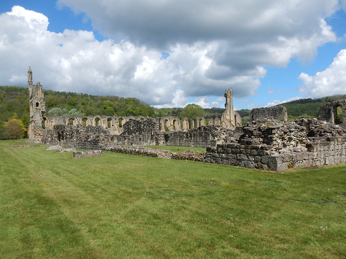 Byland Abbey, 14th May, 2017-002