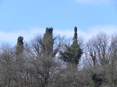 DSCN9436 (Gianluigi Roda / Photographer) Tags: earlywinter historicalsites montesole marzabotto apennines