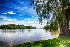 Vue  de la rivière Allier. (Crilion43) Tags: arbres feuillesfeuillage rivière ciel paysages allier arbustes nuages eauvagues